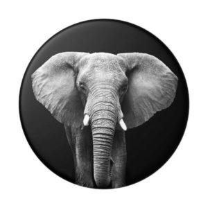POPSOCKETS Loxodonta Africana (gen2) standard
